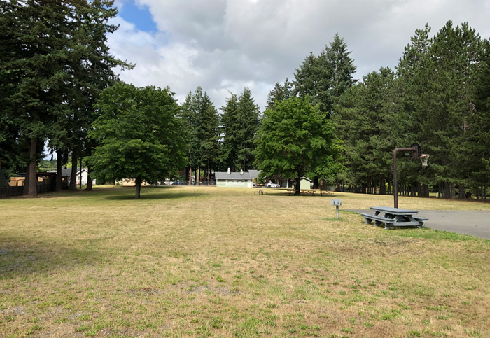 Eatonville's Glacier View Park was a topic of conversation at a recent Town Council Meeting, with some of the town's residents fearing the conversion of part of the park into a soccer field. Photo by Tammy Knaggs